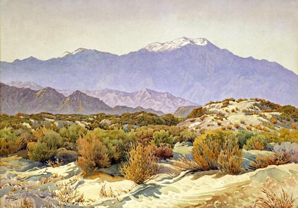 Gunnar Widforss, San Jacinto