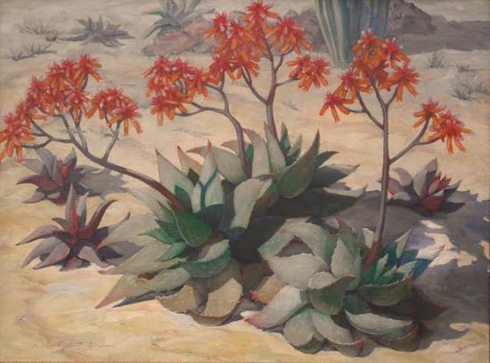 Louise Nimmo, The Aloe Bloom. Courtesy of Edenhurst Gallery.