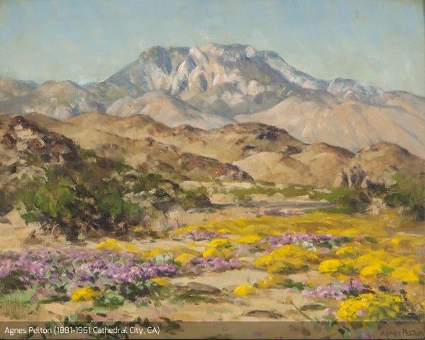 Pelton desert scene